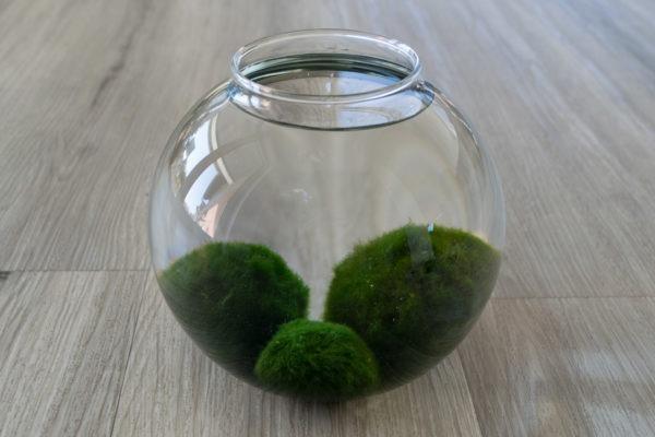 Dóza - velká koule (ruční výroba)